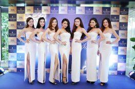 Cung cấp PGS, PBS chuyên nghiệp - Minh Vũ Media